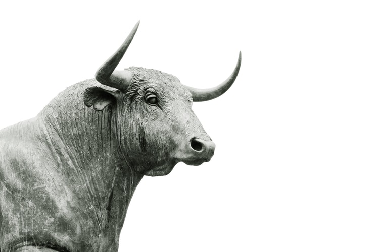 Bitcoin bull markt