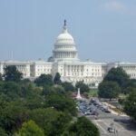 CEO van Bakkt, Kelly Loeffler, is benoemd als senaat