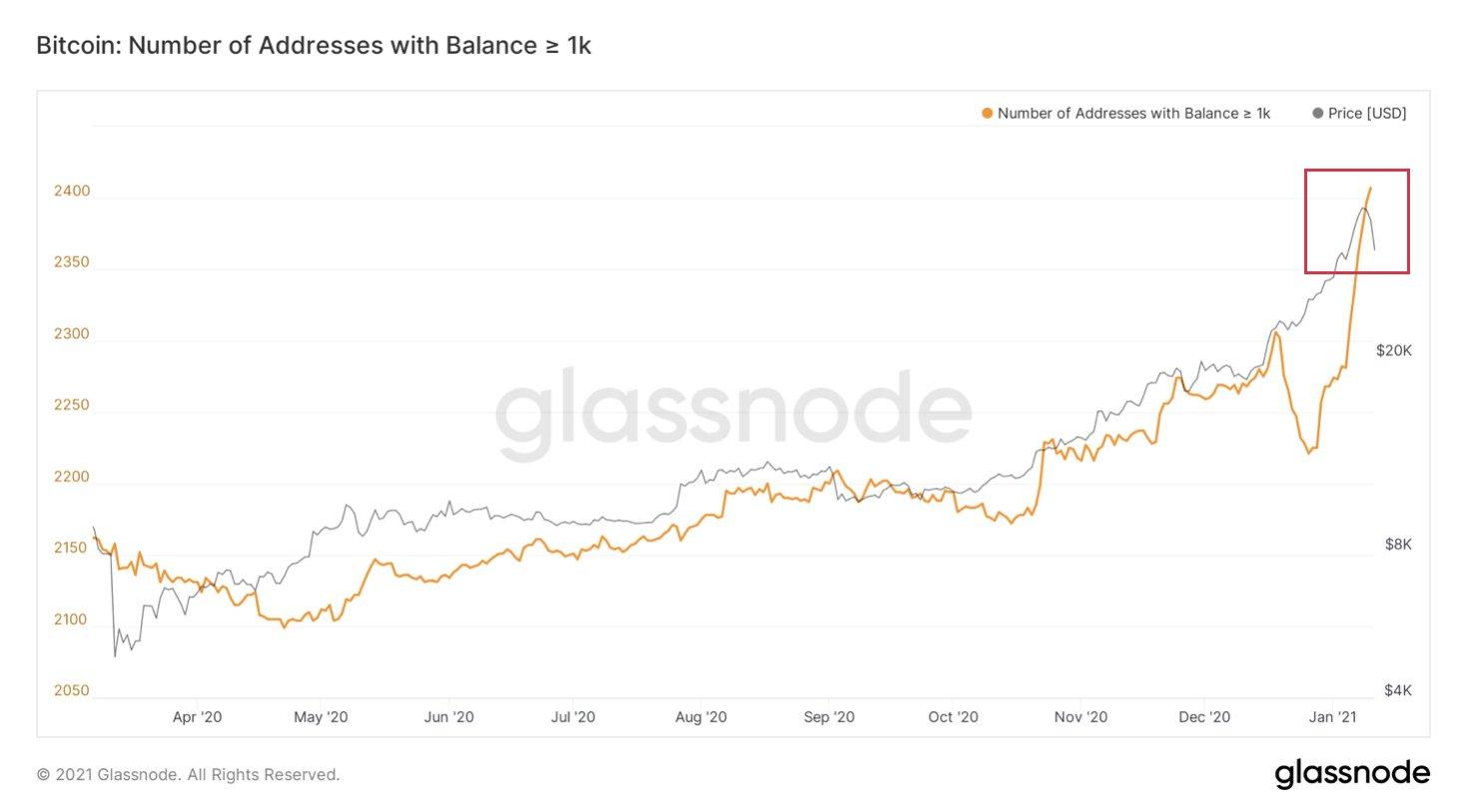 Bitcoin-whales